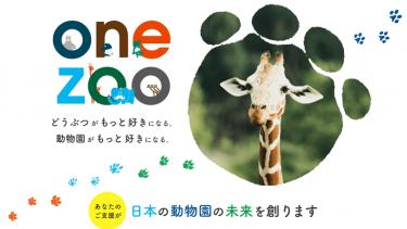 動物園を支援するアプリ「one zoo」。動物たちの映像のほか、動物園を楽しむ機能が満載!